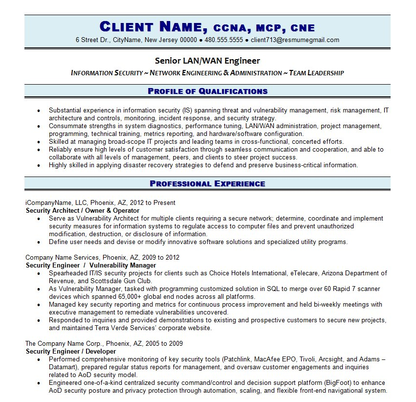 Professional IT Resume | Resume Writing Guild